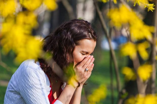 Achoo! How to survive hay fever season - What to eat (and what to ...